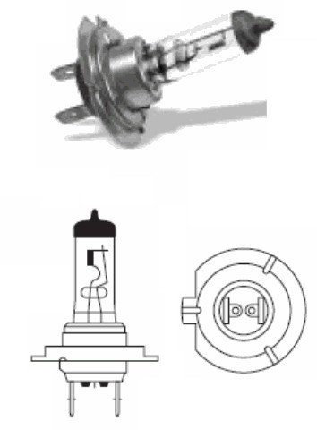 Removable Halogen Bulb